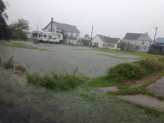 floodinggreenback